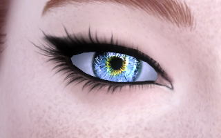 Memory Eyes_CL