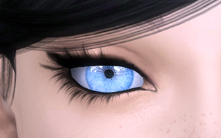 Ally Eyes_CL