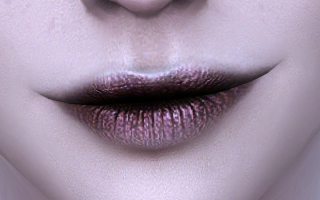 Lips 145