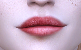 Lips 112