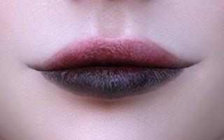 Lips 150