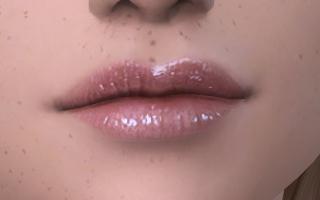 Lips 177