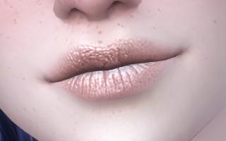 Lips Overlay 07