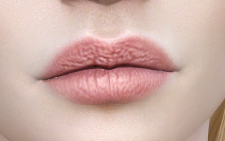 Lips 201