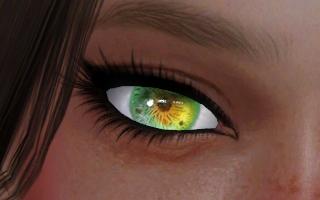Elise Eyes