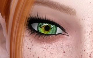 Nancy Eyes