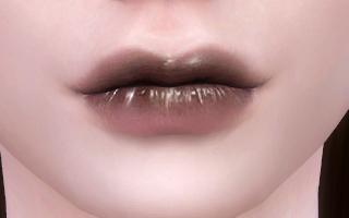 Lips 231