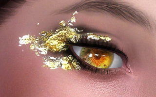 Eyeshadows 53