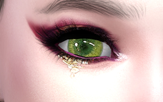 Eyeshadows 54
