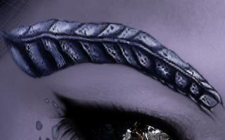 ArcaneIllusions_DragonsEyebrows