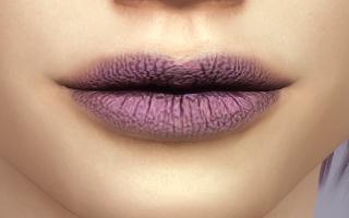 Lips 245